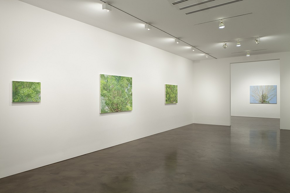 Sylvia Plimack Mangold: Recent Works - Installation View