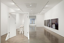 Past Exhibitions: Willie Doherty, Victor Grippo and Sylvia Plimack Mangold Sep  7 - Oct  9, 2010