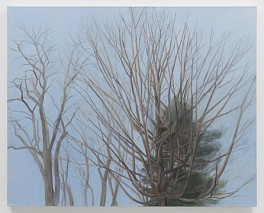 Past Exhibitions: Sylvia Plimack Mangold: recent paintings and watercolors Apr 12 - May 17, 2003
