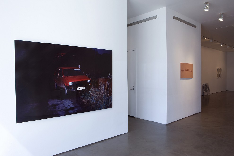 Stay alive till '95 - Installation View