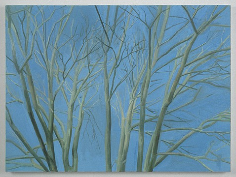 Sylvia Plimack Mangold ,   The Pin Oak (Winter)  ,  1999     oil on linen     30 x 40¼ in/76.5 x 102.5 cm     SPM-99-PA-210