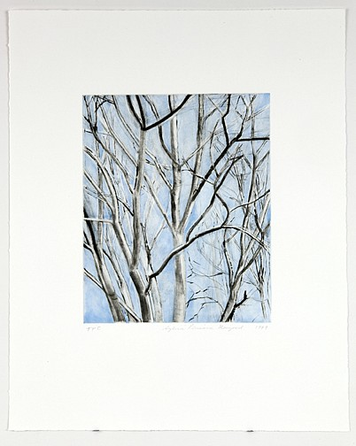 Sylvia Plimack Mangold ,   Pin Oak Detail  ,  1999     color drypoint with spitbite aquatint     Image: 11 x 9 in/28 x 23 cm 