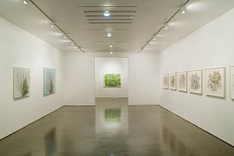 Past Exhibitions: Sylvia Plimack Mangold Sep  8 - Oct 13, 2007