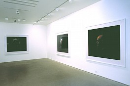 Past Exhibitions: Willie Doherty: NON-SPECIFIC THREAT Feb 27 - Apr  3, 2004