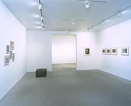 Mona Hatoum, Oct 19 – Nov 27, 2002